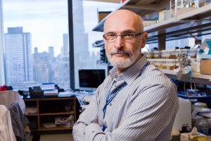Alexander Y. Rudensky, PhD