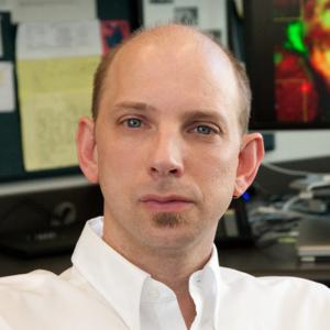 Max Krummel, PhD