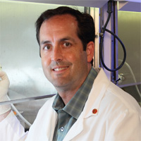 Robert M. Prins, PhD