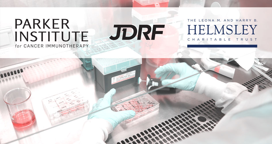PICI JDRF Helmsley Trust Cancer Diabetes Research