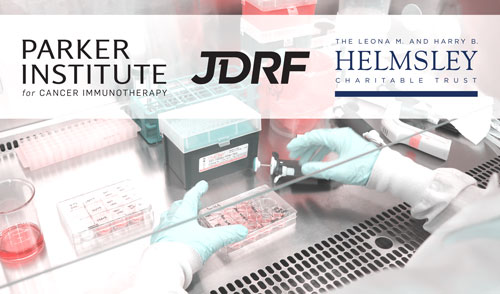 PICI JDRF Helmsley Diabetes Cancer ResearchInitiative WHATSNEW Featured