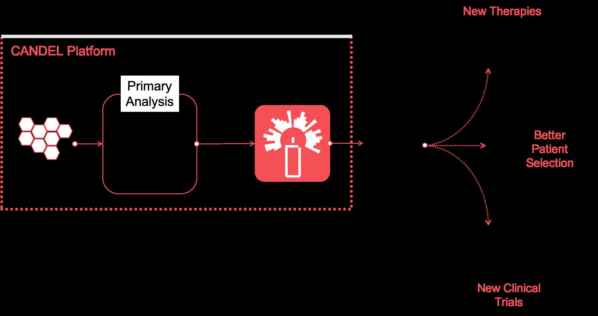 CANDEL platform flowchart